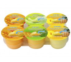 Pudding met Fruit Assorti 708 gram